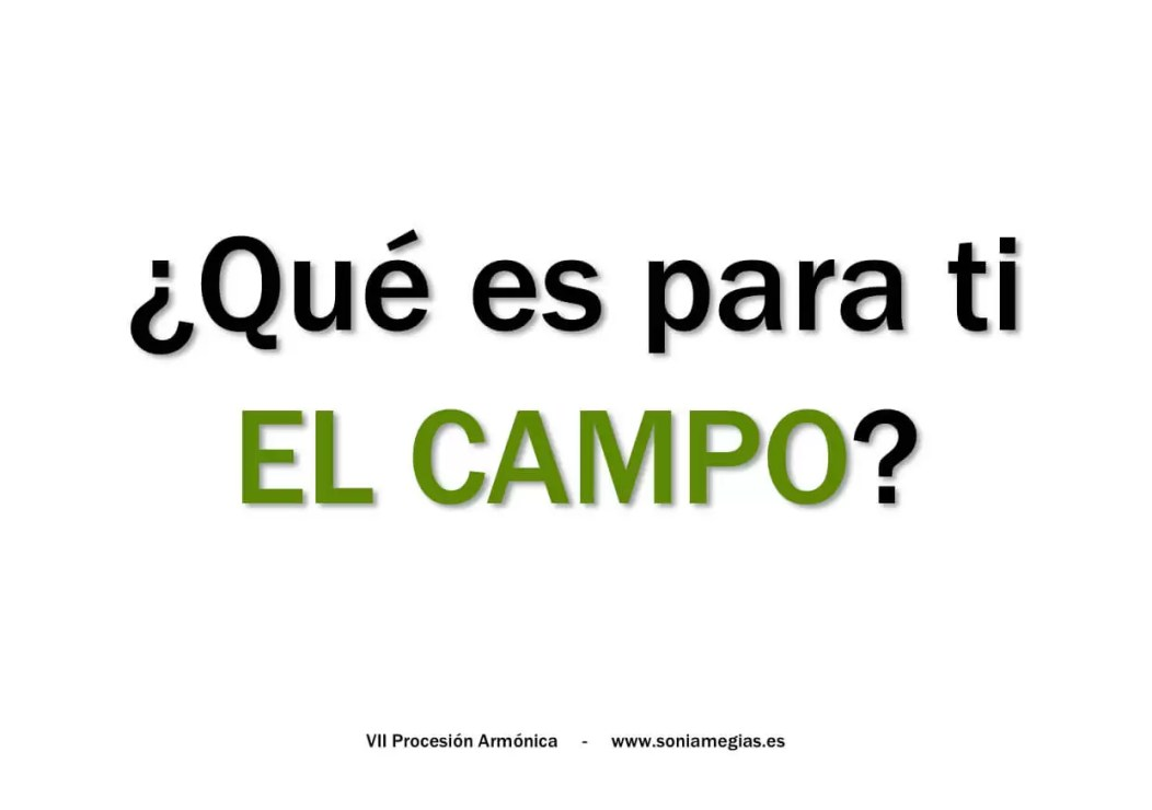 2014'IX'6. Buitrago del Lozoya. VII Procesión armónica - pegatina CAMPO