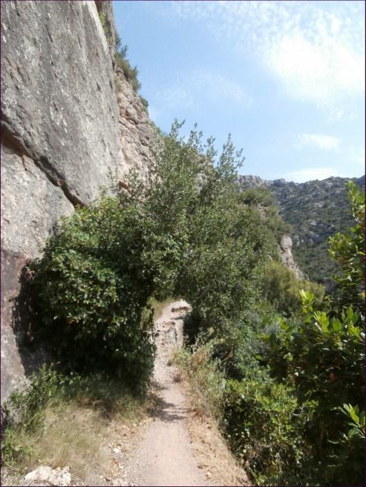 Detalle del camino (luego se pondría la cosa más fea con piedras y tal)