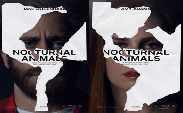nocturnal-animals-1-640x394