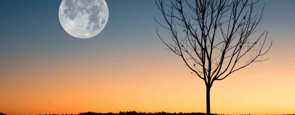 full moon on a daybreak
