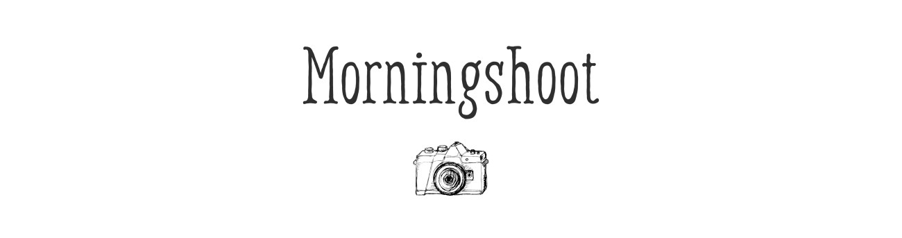 header_morningshoot