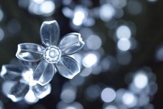 More flower lights.
