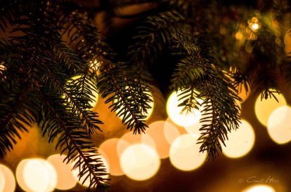 Advent, Weihnachten, Markt, Christmas, winter, Lichter, lights, tree
