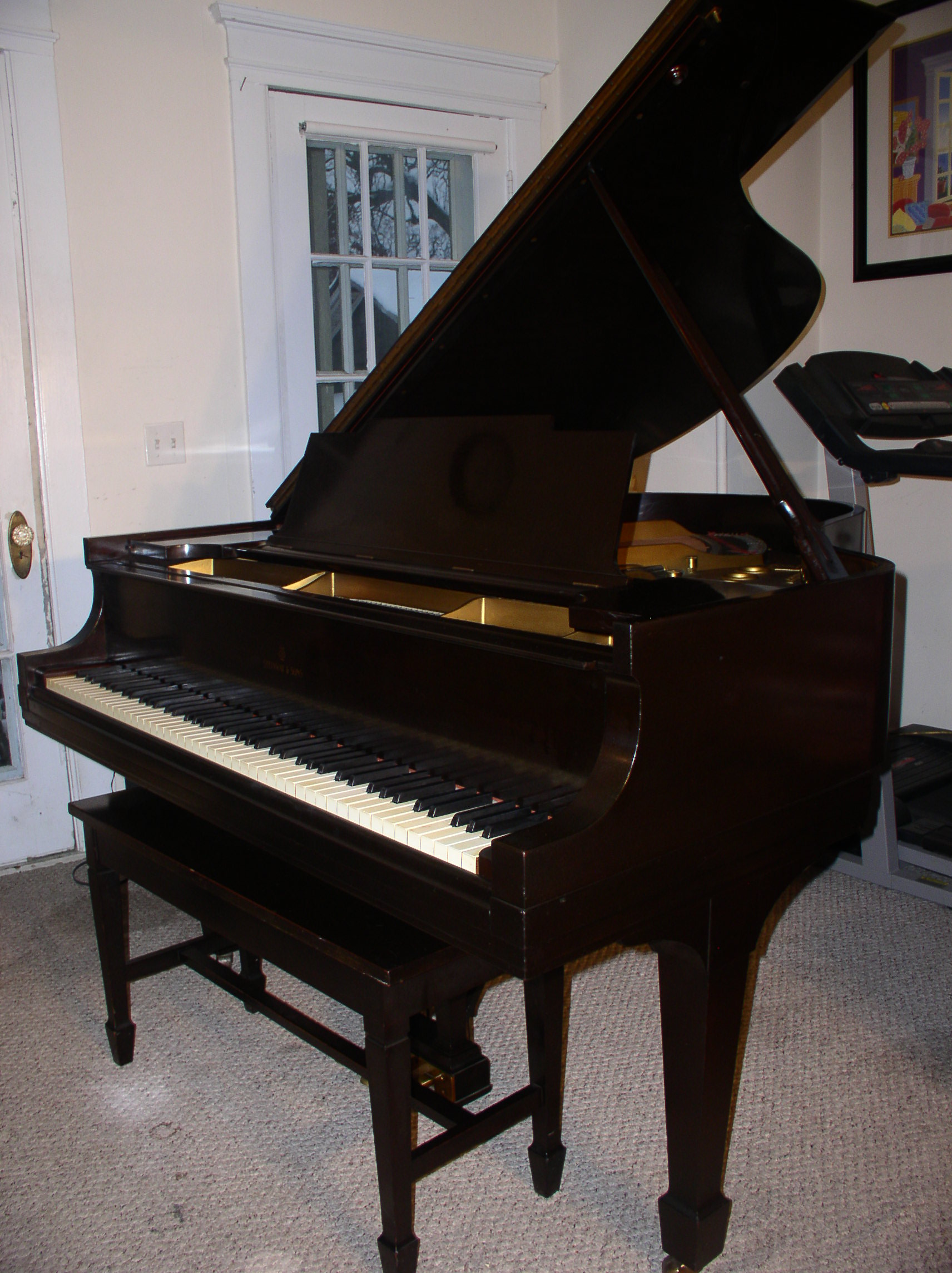 Piano For Sale Steinway Grand Piano Model M 5 7