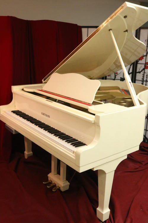 White Gloss Schumann 5'8