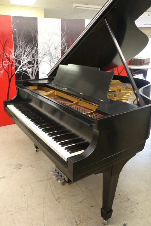 SPECIAL OF THE WEEK ONLY $9500! Steinway M Piano Satin Ebony 5'7
