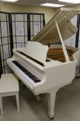 White Gloss Ivory Baby Grand Young Chang 5'2