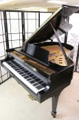 Steinway M Ebony Grand Piano (VIDEO) $13,500