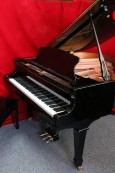 Pramberger-Young Chang Player Piano 2001 5'4
