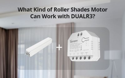 What Kind of Roller Shades Motor Can Work with DUALR3?
