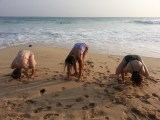The girls preferred yoga.