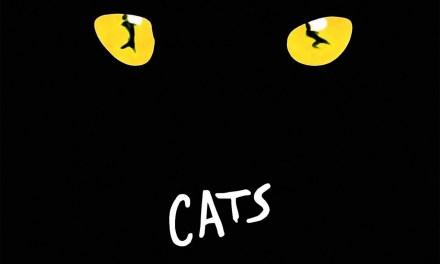 Cats à Mogador