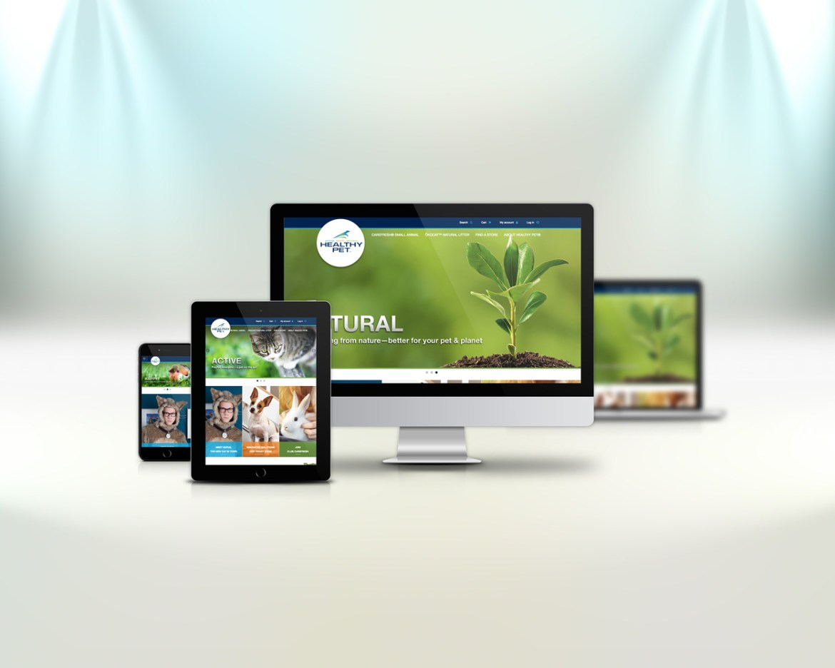 Web Development | Sonoma Web Solutions