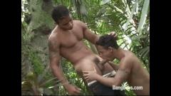 Garotos brasileiros fudendo no mato