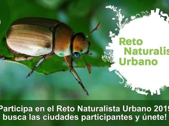Reto naturalista urbano