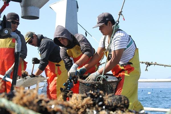Pesca y acuacultura sustentables