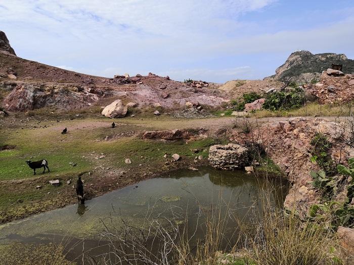 Isla de los chivitos Mazatlán