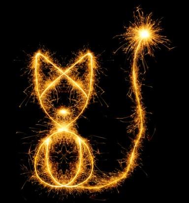 Gatos y fuegos