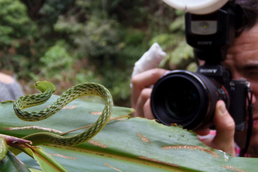 Malaisie, Photo, Trips