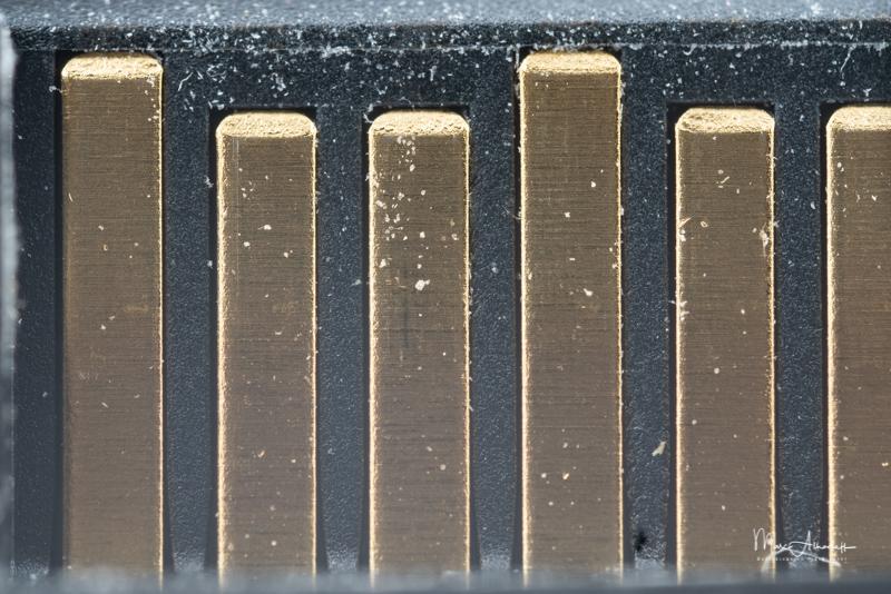 5x, F5.6, Laowa 25mm F2.8 2.5-5X- ISO 800-1-3 s 015