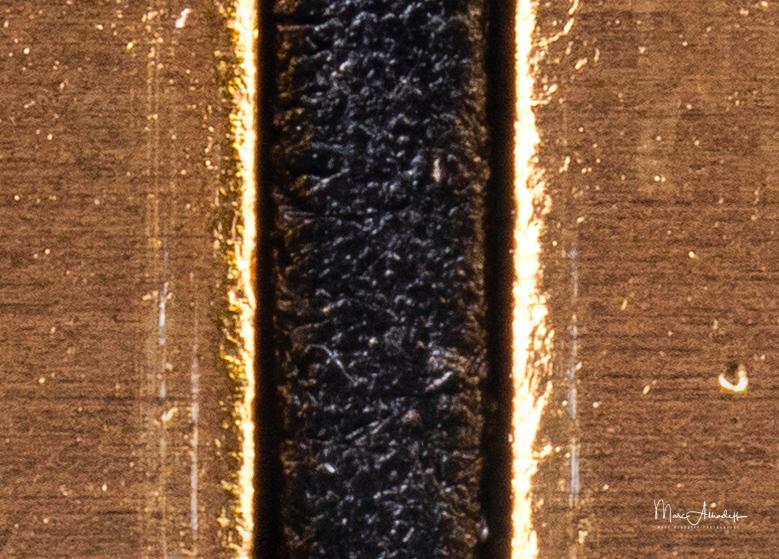 Laowa 25mm F2.8 2.5-5X, stacking 10 photos- - 019-2
