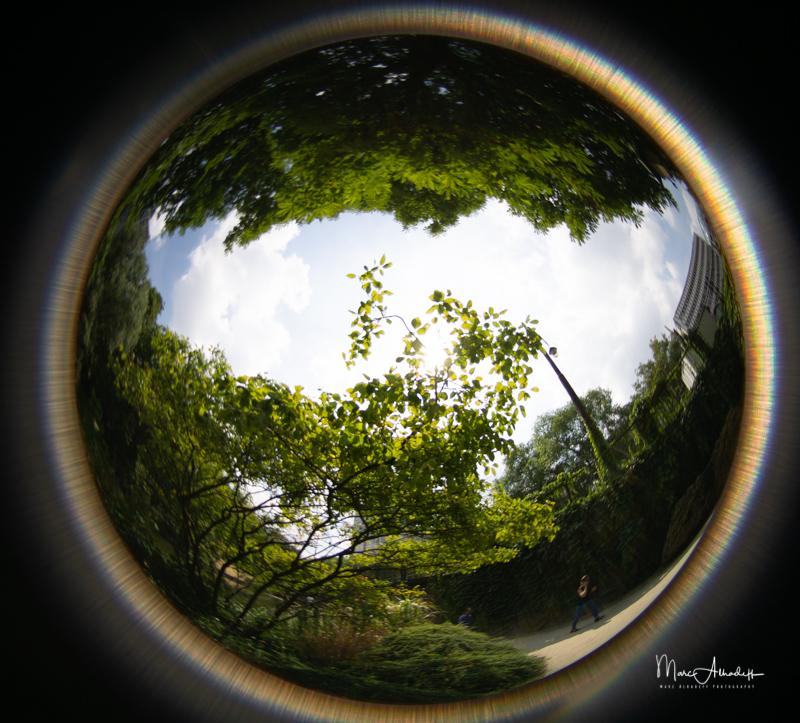 Lensbaby 5.8mm F3.5 Circular Fisheye- ISO 100-1-2500 s 006
