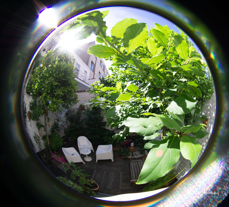 Lensbaby 5.8mm F3.5 Circular Fisheye- ISO 100-1-60 s 012