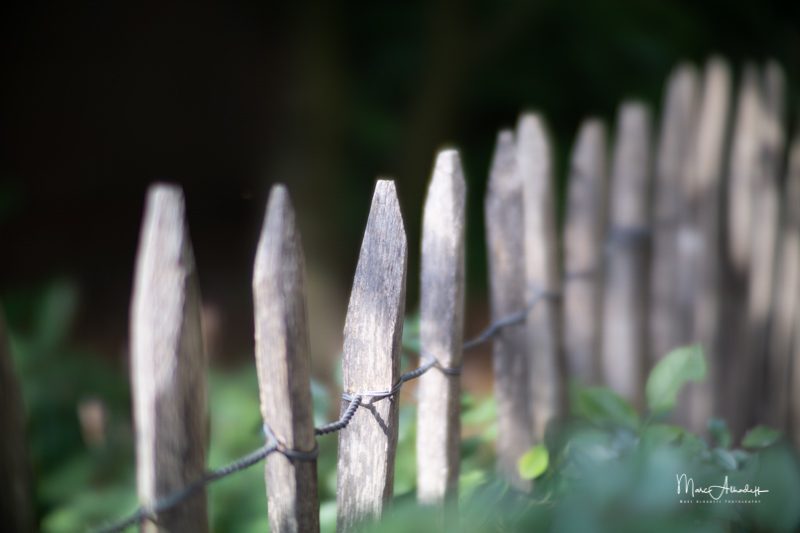 F0.85, Handevision IBELUX 40mm F0.85- ISO 100-1-800 s 045