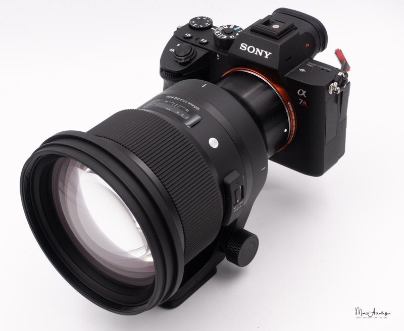 Sigma 10mm F1.4 DG HSM Art-14
