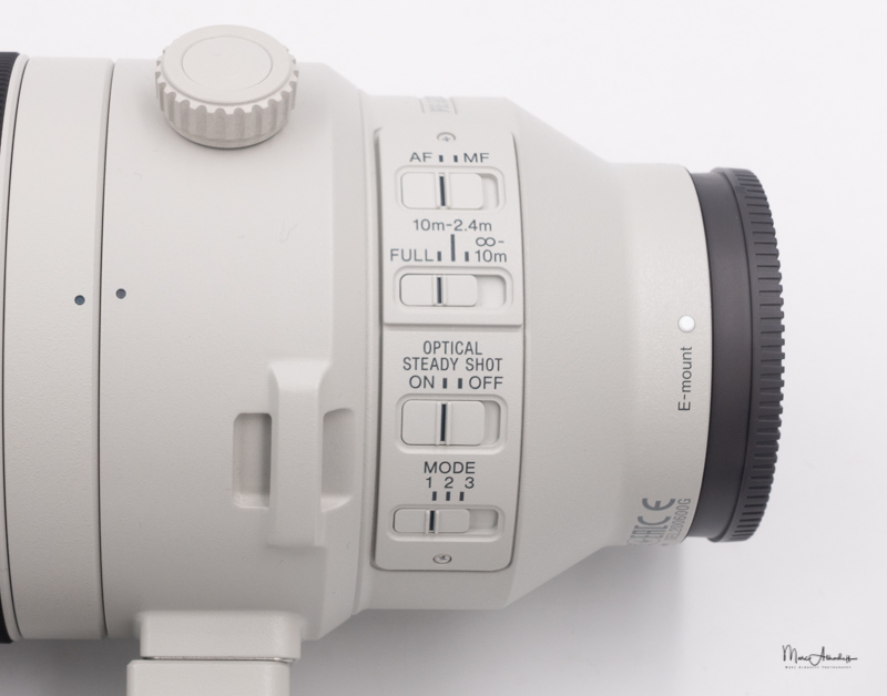Sony FE 200-600 F5.6-6.3 G OSS-07