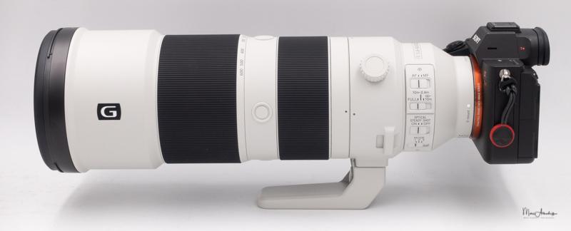 Sony FE 200-600 F5.6-6.3 G OSS-13