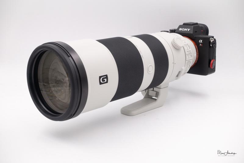 Sony FE 200-600 F5.6-6.3 G OSS-16