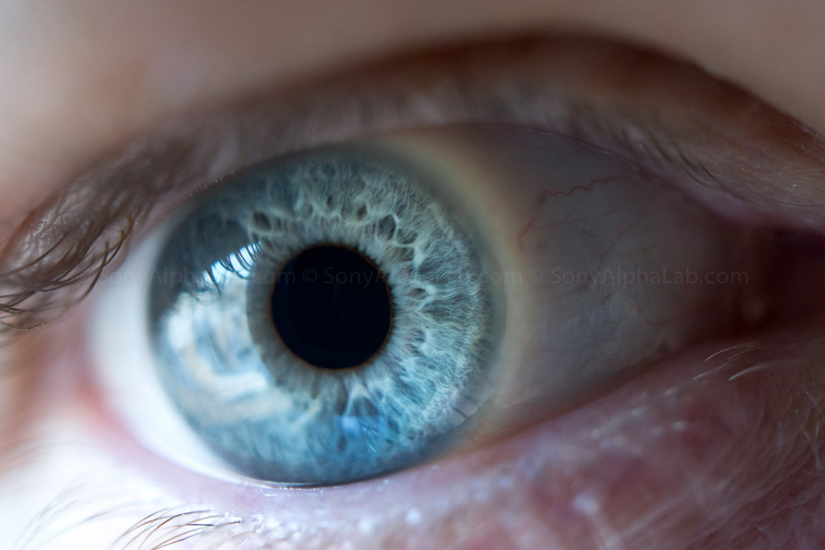 My Eye - Nex-7 w/ Sony 30mm Macro Lens @ f/4, 1/80sec, ISO 1600