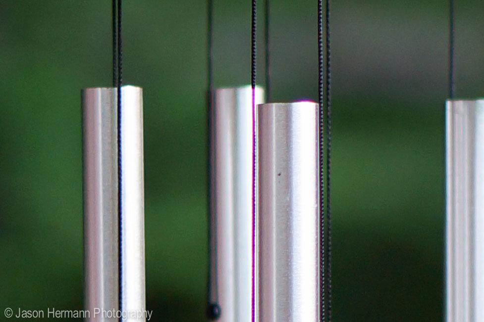 Nex-5n, Sony 50mm f/1.8 OSS Lens @ f/8 ,1/80sec, ISO 200, Hand Held