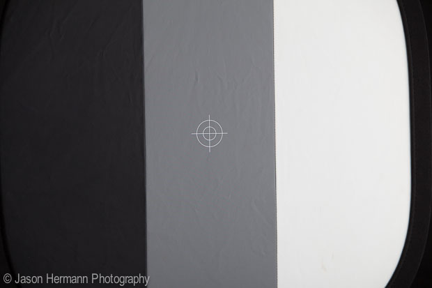 Target Photo from Lightroom