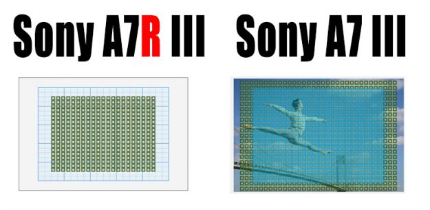 Sony a7r III vs a7 III AF Sensor Coverage