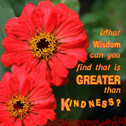 WisdomGreaterThanKindness_500