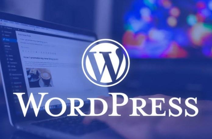 Thêm Schema vào trong Website sử dụng WordPress