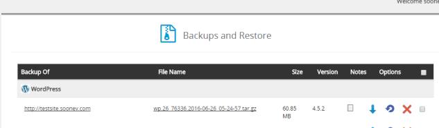Summary of backup by Softaculous
