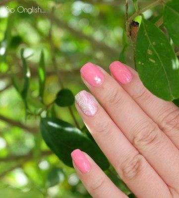 Pink feuillage-4