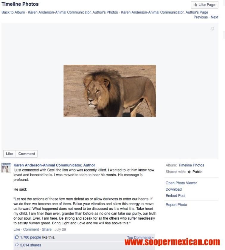 cecil the lion 1