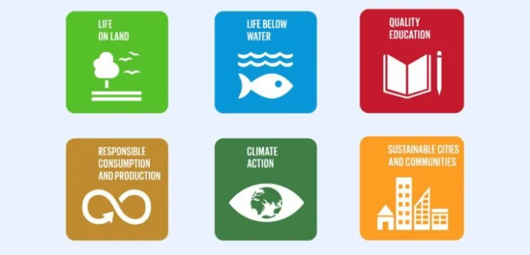 sophia high school sustainable goals
