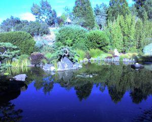 Osmosis Zen Garden in Sebastopol, CA. Photo by Jamie Walters.