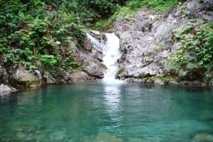 Rain forest in Çayeli, Rize in Turkey. 19 June 2005, Karduelis - Public Domain via Wikimedia, S&S.