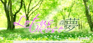 Lotus Rose 森夢様 HPヘッダ