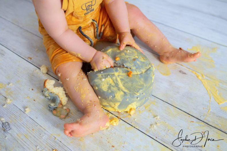 Séance photo smash the cake Morbihan - Malestroit 56140 - Bretagne - Sophie d'Inca, photographe