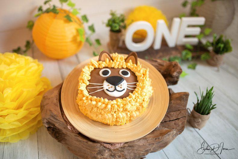 Fêter son anniversaire - 1 an - gâteau - photos -souvenirs