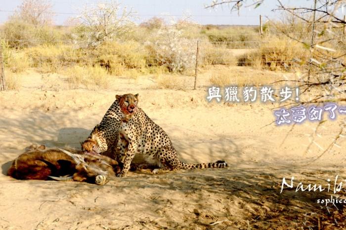 納米比亞旅遊∣與獵豹散步太夢幻╳餵食野生動物不是夢。Naankuse野生動物保護中心