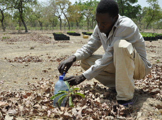 Water Bottle Technologies save drought stricken Burkina Faso Farmers
