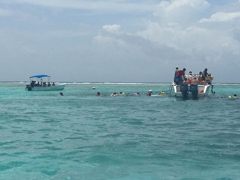 Caye Caulker. Snorkeling al reef
